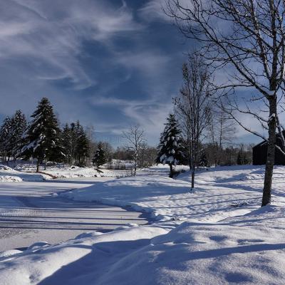 Les Mille Etangs sous la neige