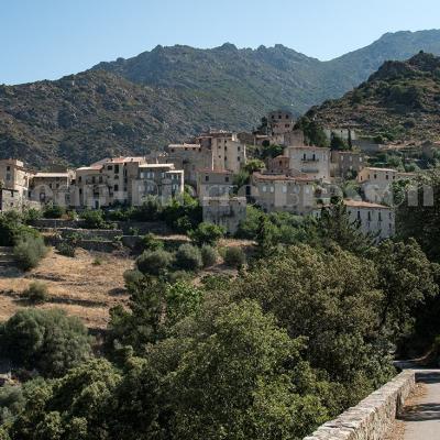 LAMA, village centre Corse