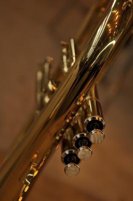 1 trompette 013