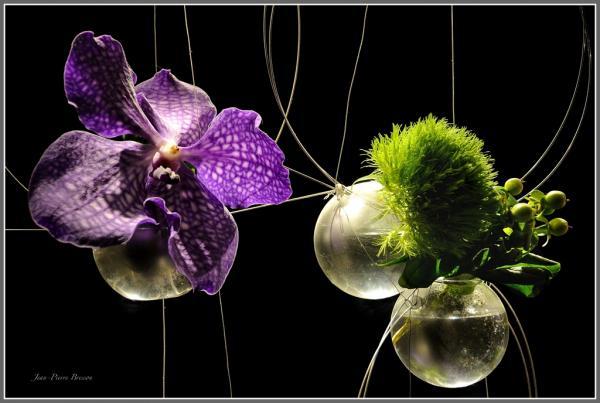 composition-florale-01.jpg