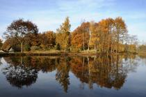 mille-etangs-automne-38-2.jpg